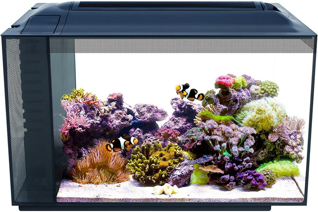 Fluval 10531A1 SEA EVO XII Aquarium Kit, 13.5 gal