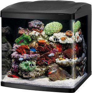 Coralife LED Biocube Aquarium LED reviews and user guide