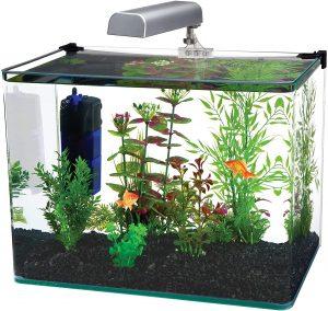 Penn Plax Curved Corner Glass Aquarium Kit reviews and user guide