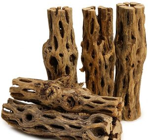 5 Pieces Long Natural Cholla Wood for Aquarium Decoration by NilocG Aquatics reviews and user guide