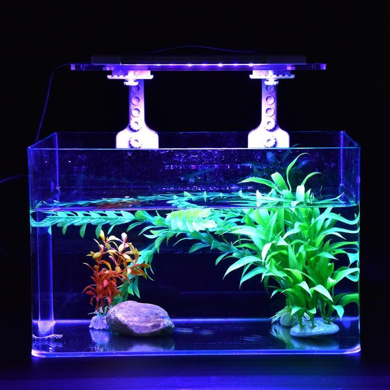 Best Aquarium Lighting